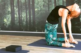 Synaptic Yoga