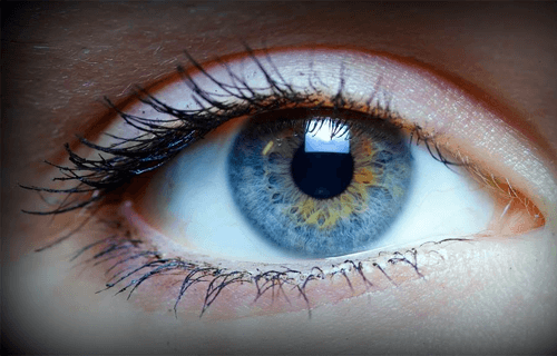 Sandton Optometrists