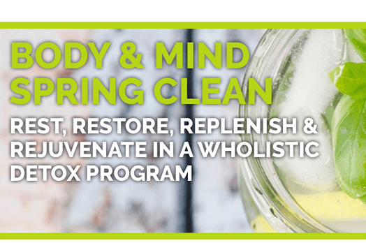Rest & Digest Wellness Haven - Body & Mind Spring Clean Retreat