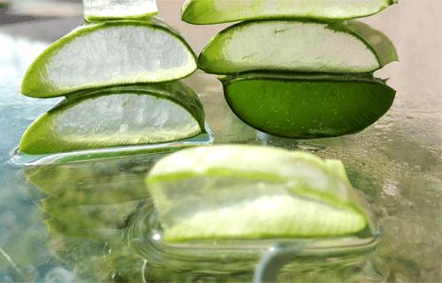 The Natural Aloe Skincare Company
