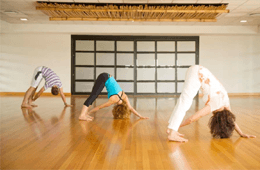Yoga Teachers Fellowship