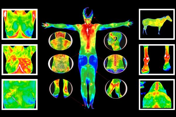 Digital Infrared Thermal Imaging