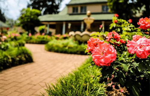 Flower Foundation