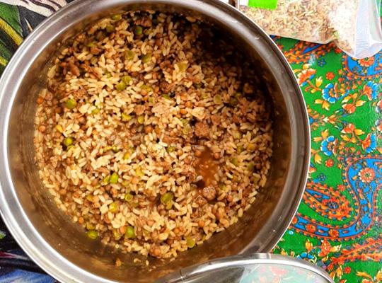 Pot of Maxi Blend Meal